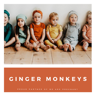 Ginger Monkeys